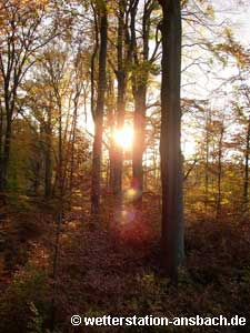 goldener Oktober 2005 in Stuttgart