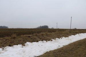 Schnee im Februar 2017 gab es nur in Form von Januar-Restschnee in Senken, Mulden wie als Schneeverwehungen, wie hier bei Weickershof nahe Unterrottmannsdorf. Foto: Goede