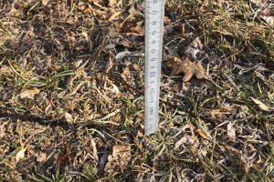 Kläglich gescheitert: Schneehöhenmessung im Januar 2020....