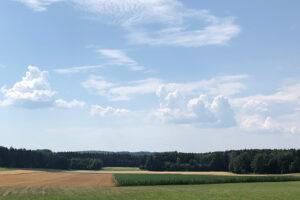 1. August 2020: Rekordhitze in Mittelfranken mit bis zu 36 Grad. Foto: Hans-Martin Goede